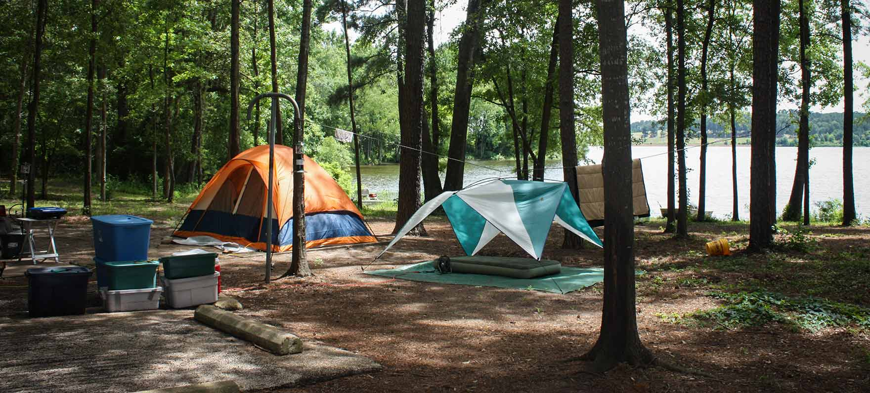 Martin Creek Lake State Park — Texas Parks & Wildlife Department - Texas State Parks Camping Map