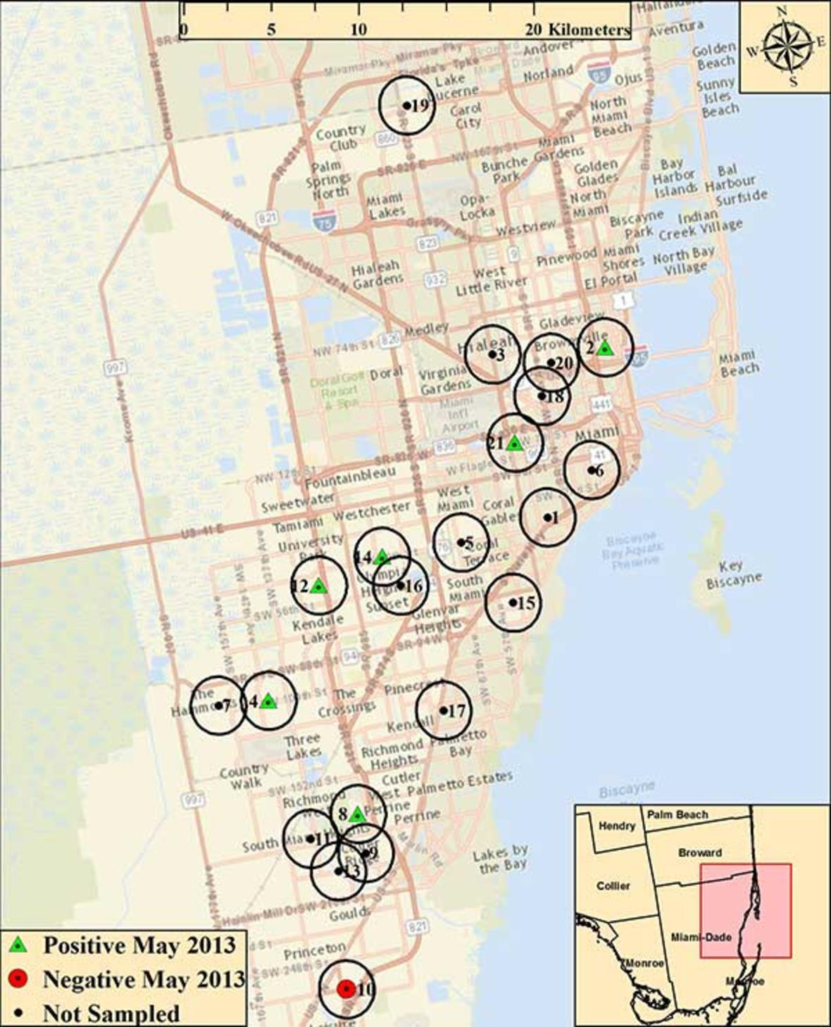 Miami Map Giant African Land Snails Were Collected In May 2013. - Giant Florida Map