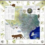 My Favorite Map: The Natural Heritage Map Of Texas, 1986 – Texas Public Land Map