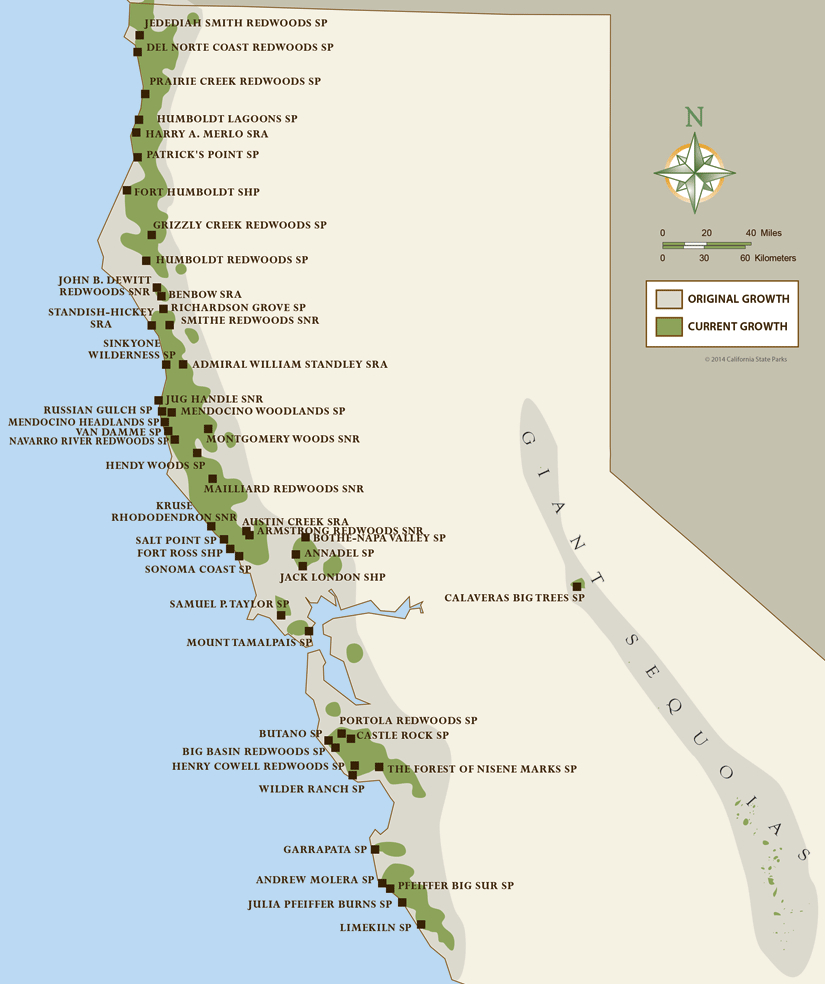 North Coast Redwoods Map | California Girl In 2019 | Pinterest - Map Of Northern California Campgrounds
