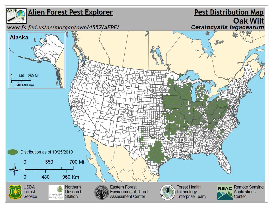 Oak Wilt | Wizard Landscaping And Tree Trimming - Oak Wilt Texas Map