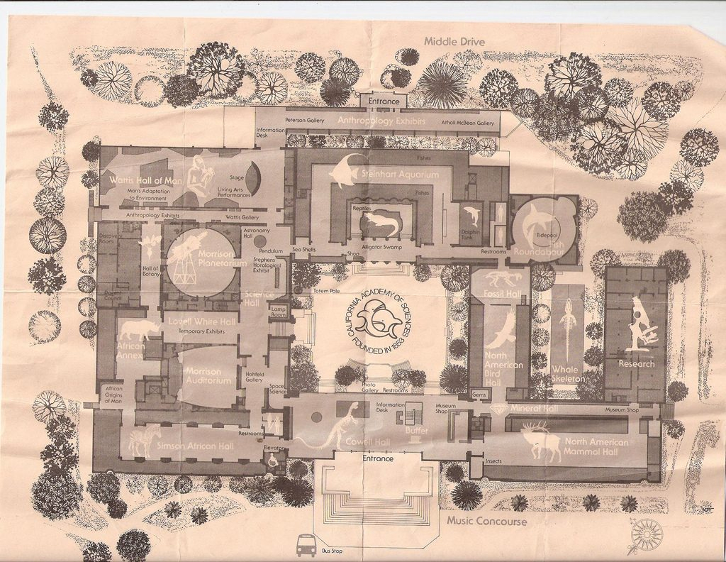 Old California Academy Of Sciences Floor Map Art Exhibition - California Academy Of Sciences Map