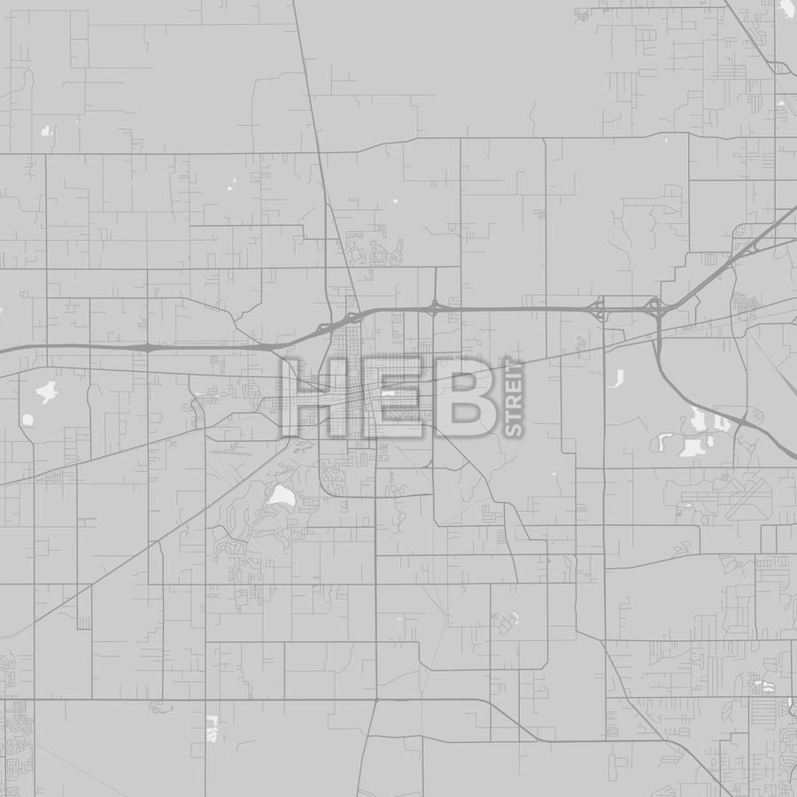 Plant City, Florida - Area Map - Grey | Infographic - Plant City Florida Map