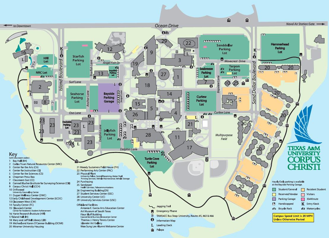 Program: Finance, Bba - Texas A&m University Corpus Christi - Acalog - Texas State University Housing Map