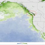 """Record Algae Bloom Laced With Toxins Is Flourishing In """"the Blob   Toxic Algae In Florida Map"""