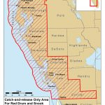 Red Tide Beach Cleanup   Map Of Crescent Beach Florida