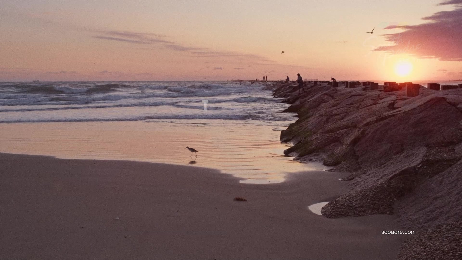 South Padre Island 2019: Best Of South Padre Island Tourism - Best Texas Beaches Map
