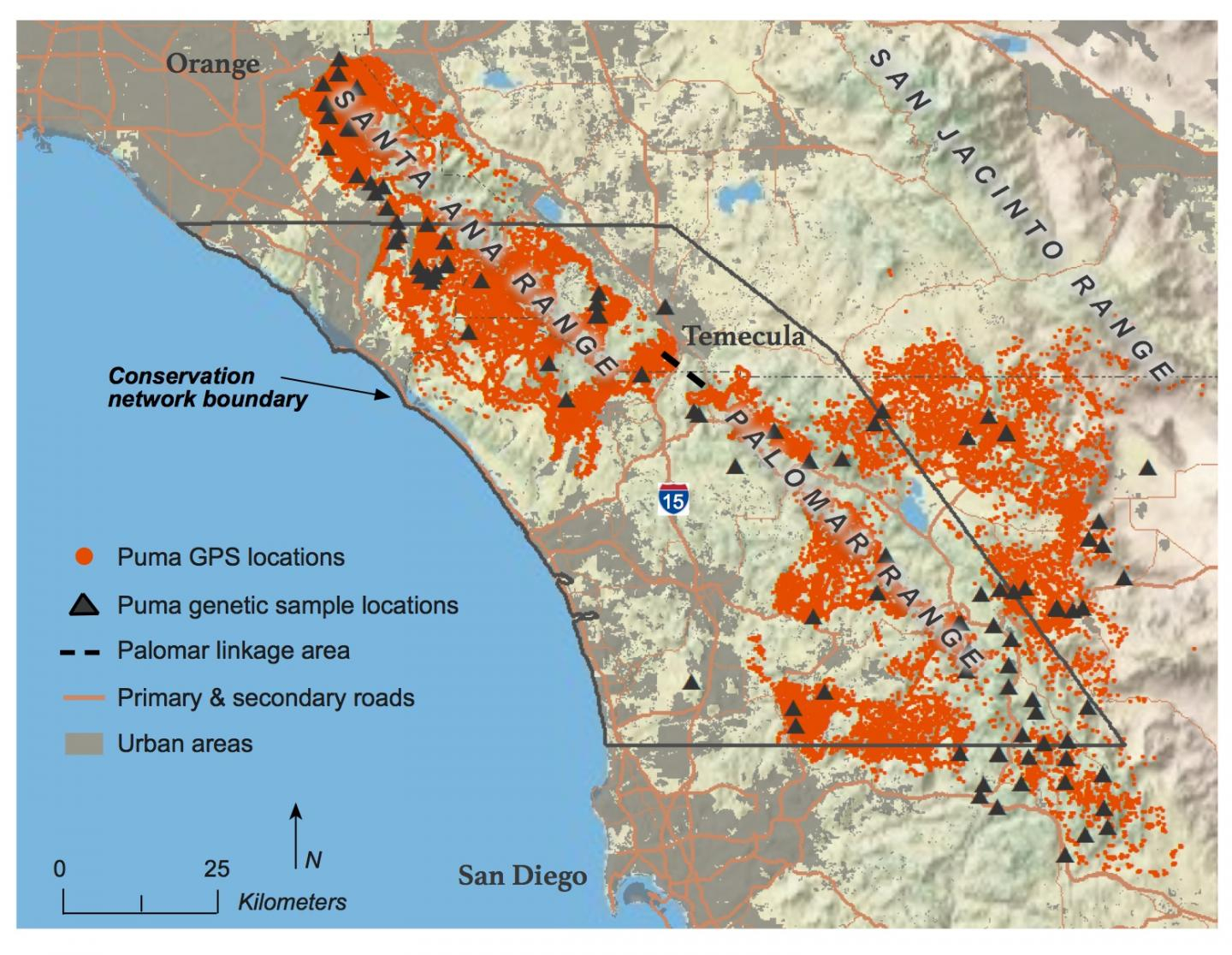 Southern California Mountain Lions' Genetic Connectivity Dangerously Low - Mountain Lions In California Map