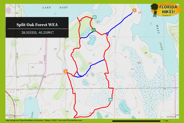 Split Oak Forest Wea   Florida Hikes! - Lake Nona Florida Map
