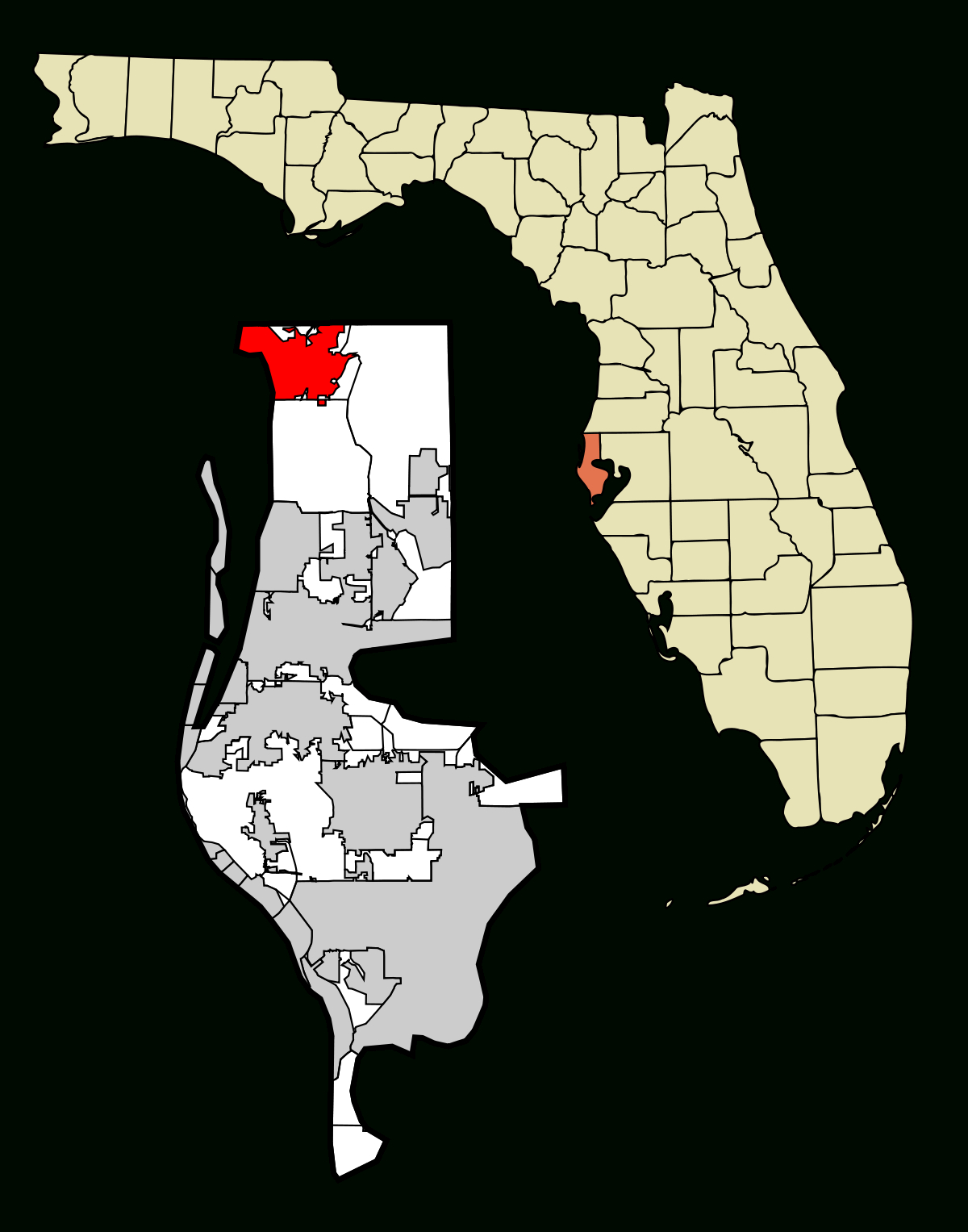 Tarpon Springs, Florida - Wikipedia - White Springs Florida Map