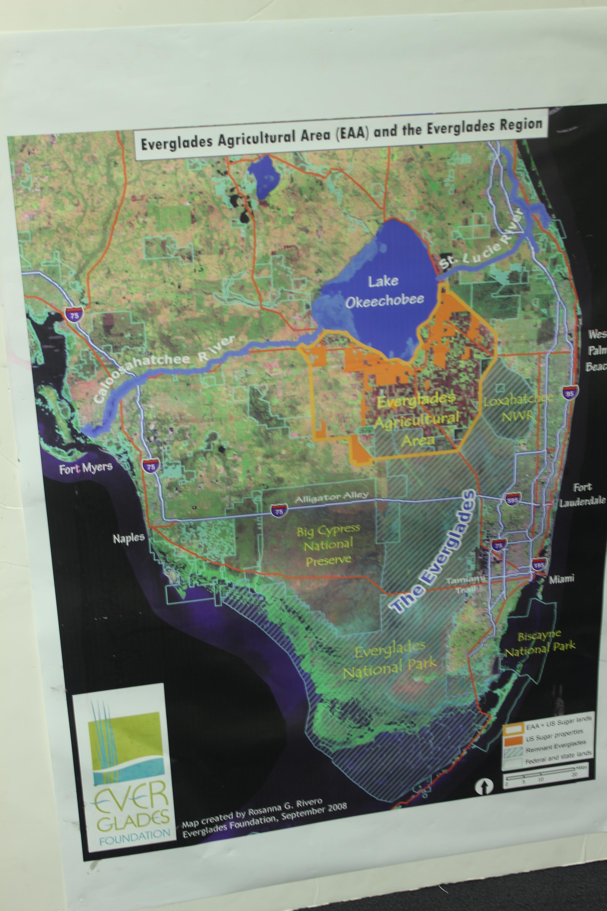 The Everglades: A 30-Year Work In Progress | Wfsu - Florida Blue Green Algae Map