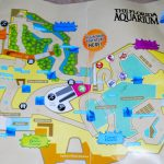 The Weekend And The Florida Aquarium!   From The Pack To The Mouse   Florida Aquarium Map