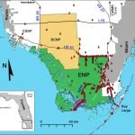 This 14 Foot Python Was Caught With 3 Deer In Its Gut. That's A Bad   Florida Snake Problem Map