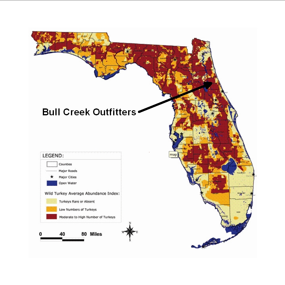 Turkey Range Map | Florida Turkey - Florida Wild Hog Population Map