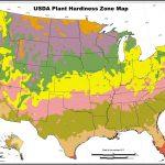 Us Growing Zone Map Printable Usda Hardiness Zones Save In Planting   Printable Usda Hardiness Zone Map