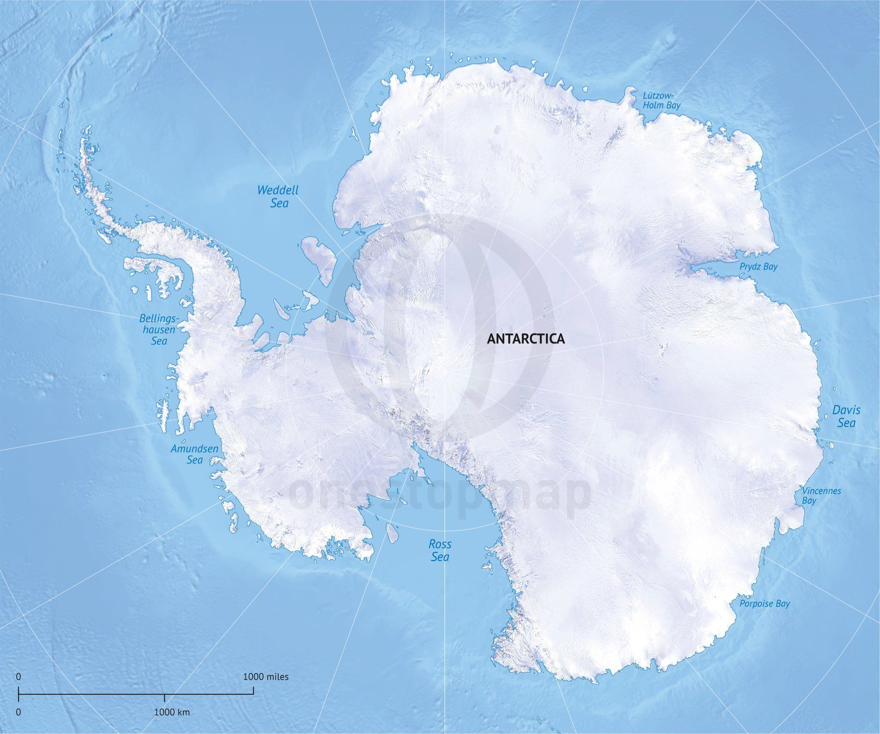 Vector Map Antarctica Continent Relief | Maps Of Continents | Map - Printable Map Of Antarctica