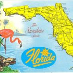 Vintage Florida Postcard   Detailed Map Sunshine State Parrot   Alligators In Florida Map