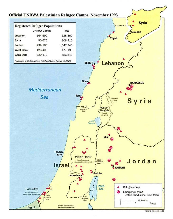 Palestine Texas Map