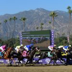 Why Have 21 Horses Died At A California Racetrack Since December   Horse Race Tracks In California Map