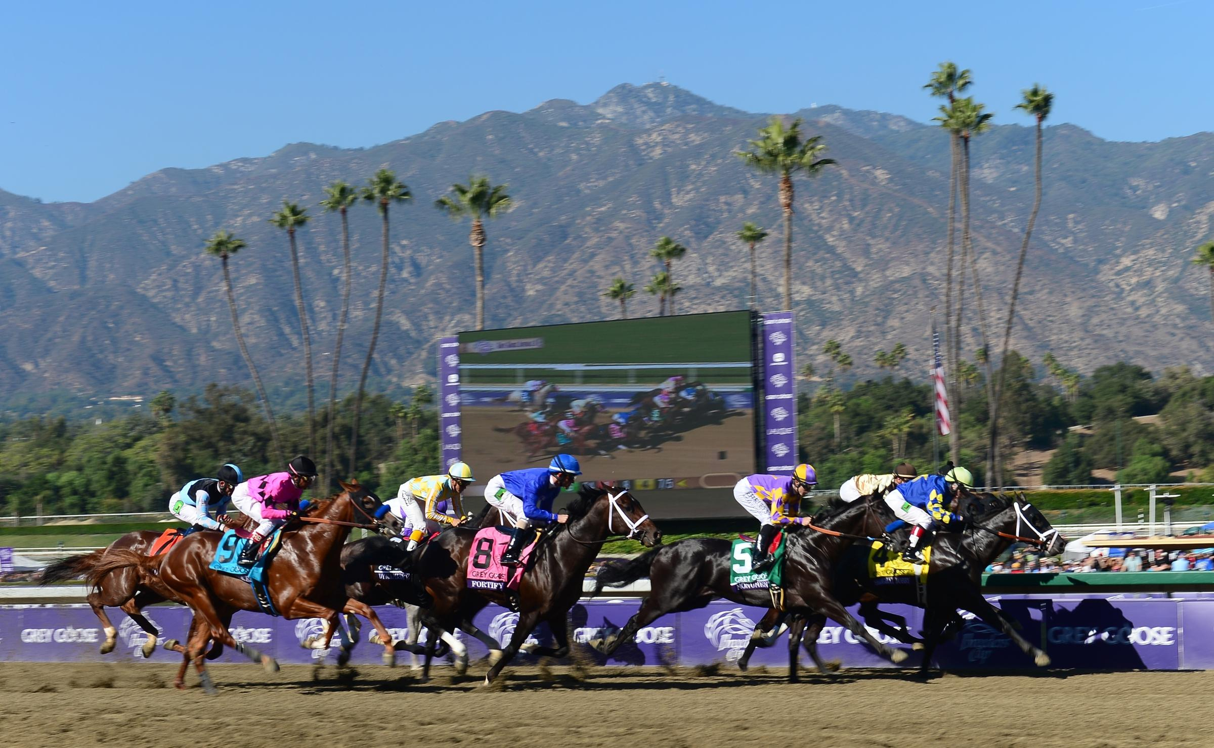 Why Have 21 Horses Died At A California Racetrack Since December - Horse Race Tracks In California Map