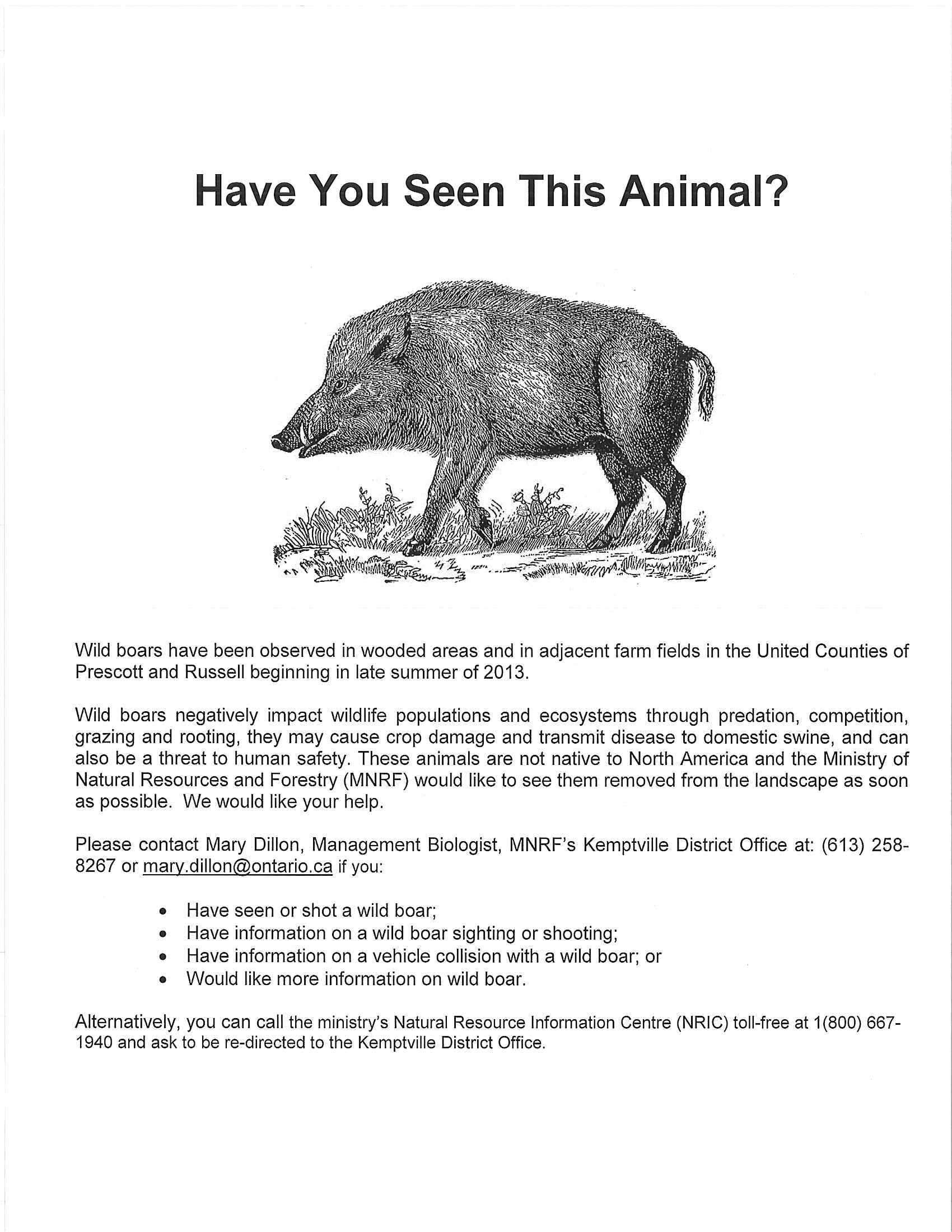 Wild Boars In Ontario – The Wilds Of Ontario - Wild Hogs California Map